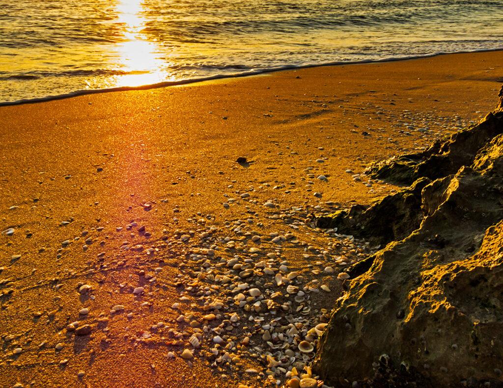 Sea Shell Sunrise ©Kent J Burkhardsmeier