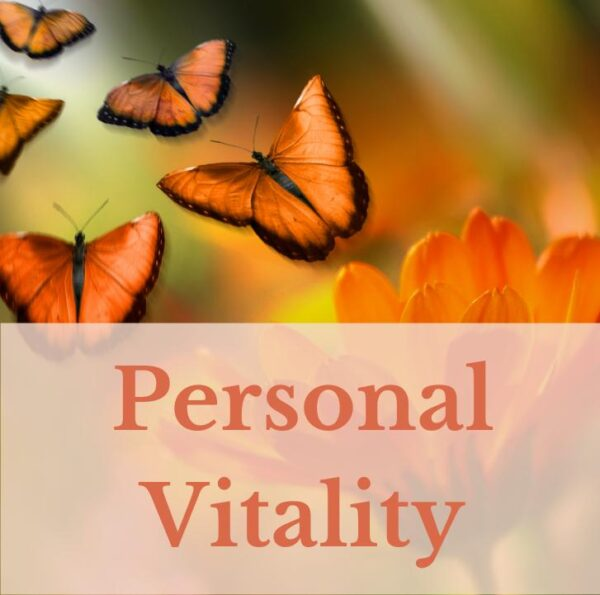 3 Month Personal Vitality Package
